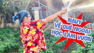 MC Cát Tường cùng con gái Nauy về Vĩnh Long trồng cây