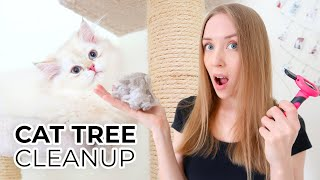 HOW TO CLEAN A CAT TREE NATURALLY STEP BY STEP Featuring: My British Longhair Cats Milo And Ava