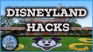 The Disneyland Hacks You NEED To See! With Tons Of Tips & Secrets!