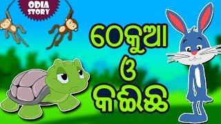 ଠେକୁଆ ଓ କଇଁଛ - The Hare and The Tortoise in Odia   Odia Story   Fairy Tales in Odia   Koo Koo TV