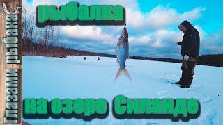Рыбалка ленинградская область озера