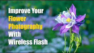 How To Improve Your Flower Photography With Wireless Flash