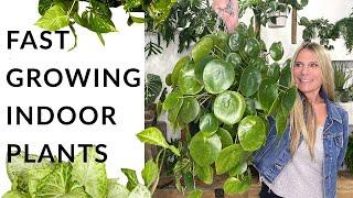 Fast-Growing Indoor Plants! | 28 Different Species