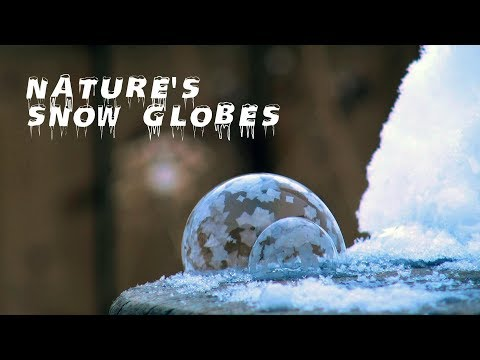 Growing Nature's Snow Globes in the Freezing Cold