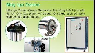 Ozone & Máy tạo Ozone công nghiệp