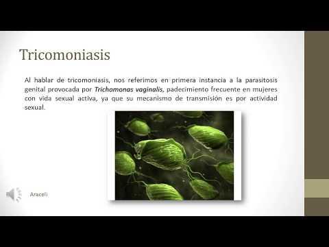 Pinworm paraziták mint