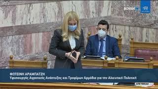 Απάντηση ΥφΑΑΤ Φωτεινής Αραμπατζή σε Επίκαιρη για τη διαχείριση του πλοίου Elbeik (19/3/21)