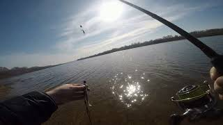 Рыбалка на оке кашира железнодорожный мост