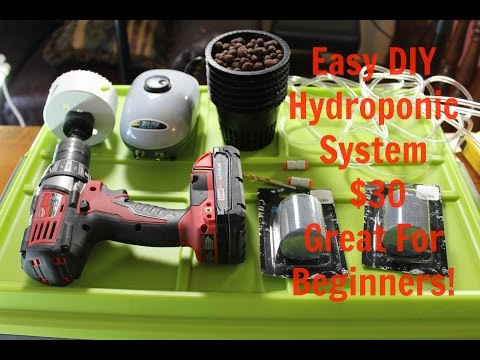 How to Build Deep Water Culture Hydroponic System on Grow Aquaponically