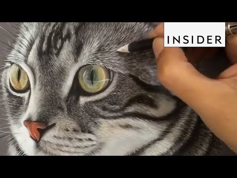Hyperrealistic Pet Portraits are Beautiful Masterpieces