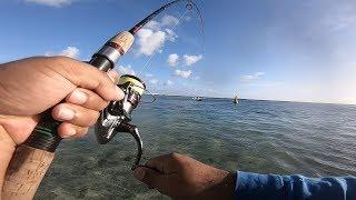 Ep13- Winter Shore fishing in Mauritius- losing 2 nice trevallies..