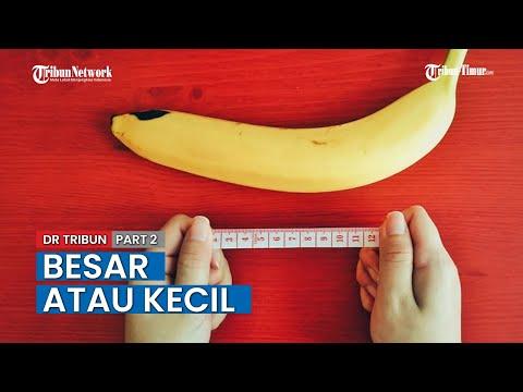 Najmniejszy penis ile centymetrów