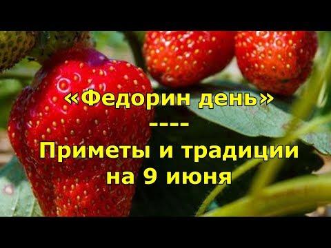 Народный праздник «Федорин день». Приметы и традиции на 9 июня.