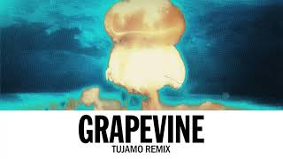 Tiësto   Grapevine (Tujamo Remix)