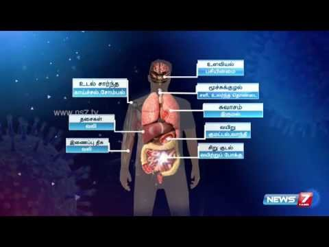 Video What are the symptoms of swine flu (H1N1)? | News7 Tamil