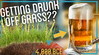 Brewing Beer from Dirt and Grass