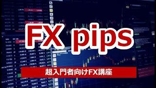 FXのpips(ピップス)とは?具体的な数字と仕組みを解説!