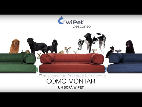 Videos from wiPet