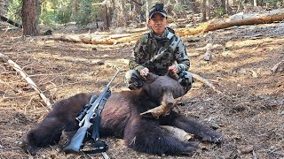 Hmong Tua Nas Tua Dais - Bear Down!