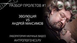Разбор пролётов №1. Эволюция VS Андрей Максимов. Мифы об эволюции человека.