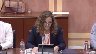 El COLEF Andalucía defiende en el Parlamento andaluz que los profesionales del deporte titulados sea