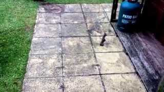 preview picture of video 'Patio Cleaning Burnham on Crouch | 07920 754997 | Essex Jet Was'
