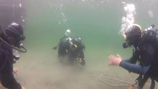 PADI Open Water Certification - skills insight