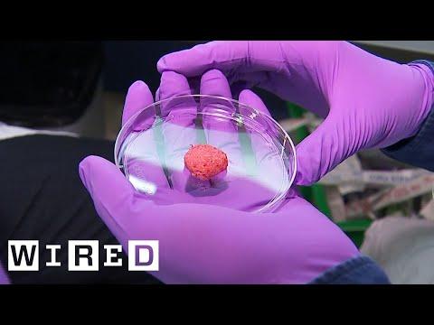 Da li biste probali meso napravljeno u laboratoriji? (VIDEO)