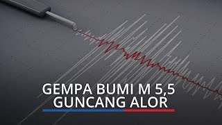 Gempa Bumi M 5,5 Guncang Alor, Tidak Berpotensi Tsunami