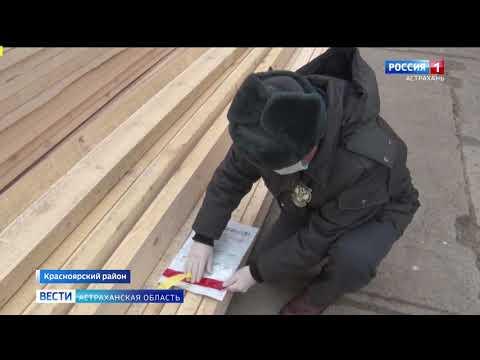 В Астраханской области Управлением Россельхознадзора проконтролировано более 70 тыс. кубометров лесоматериалов