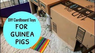 DIY Cardboard Toys For Guinea Pigs