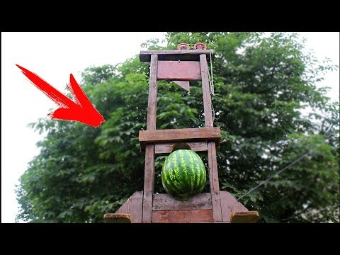EXPERIMENT: GUILLOTINE VS WATERMELON