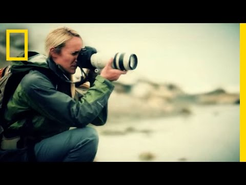 National Geographic, and The National Geographic Society Commercial (2013) (Television Commercial)
