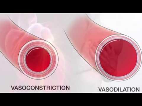 Medicamentos homeopáticos para la hipertensión arterial
