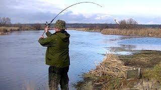 Рыбалка на река цна тверская область