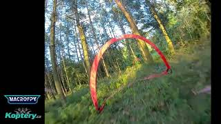Tight forest race practice with SourceOne 50 Mbps Goggle DVR - DJI HD FPV