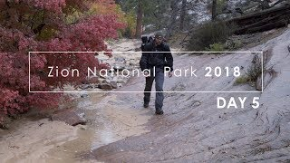 Zion Fall 2018: (Day 5) Analog Landscape Photography In Zion