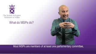 What do MSPs do?