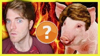 SHANE DAWSON IS A PIG? - CONSPIRACY THEORY
