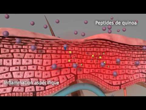 Diroton est un inhibiteur de lECA