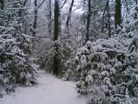 Winter's Song, an original composition