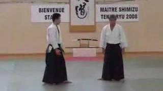 preview picture of video 'Shimizu Sensei. Ozoir La Ferriere, France, 16/03/2008 (02)'