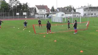 preview picture of video 'Training des ASV Neufeld am 10  Juni 2013'