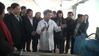 Đoàn giám sát của Quốc hội kiểm tra cơ sở giết mổ, trại bò và rau sạch ở Nghệ An