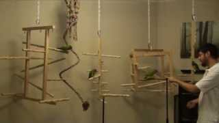 New NU Perch Hanging Play Gyms for Ginger's Parrots Rescue
