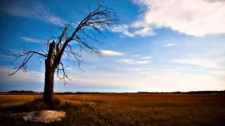 BEST LAID PLANS by James Blunt.wmv