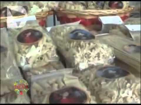 Nuova puntata della trasmissione dedicata a Vetrina Toscana, il programma promosso da Regione Toscana e Unioncamere per valorizzare i prodotti tipici del ter...