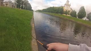 Рыбалка на ижоре в колпино
