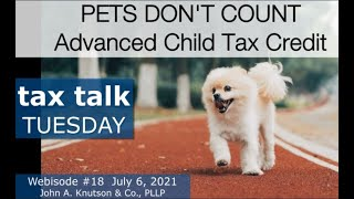 Tax Talk Tuesday: Pets Don't Count - Advanced Child Tax Credit