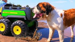 ЗАСТРЯЛИ в болоте с СОБАКОЙ или Car Stuck in the mud with DOG